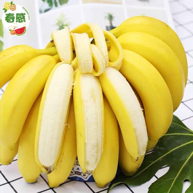 高山野生 香甜香蕉 10斤