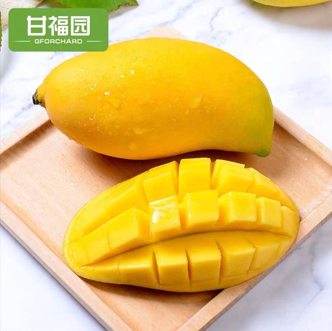 云南 鹰嘴芒 新鲜当季水果 10斤装