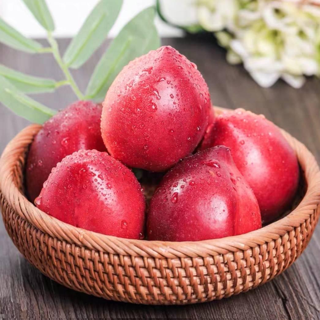春酷 新鲜黄心油桃 5斤 13.8元包邮