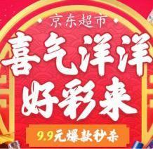 京东支付/白条优惠券 限京东超市 99-3、249-6、99-5