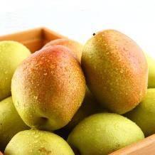 青皮梨脆梨脆甜香梨 5斤