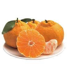 桔子花开 新鲜蜜橘蜜桔衢州丑橘子10斤