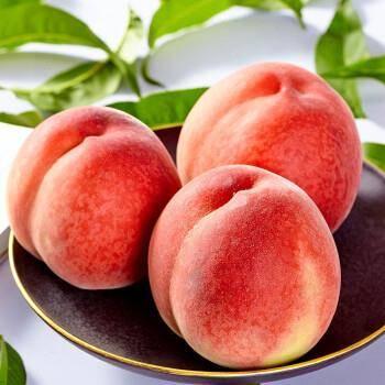 预售:山里范 贵州遵义脆红桃 5斤装 15.8元包邮(需用券)