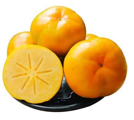 云依禾农庄 云南脆柿甜柿子 500g*5件