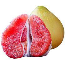 JINSHUIGUO 平和管溪紅肉蜜柚 10斤 19.9元包郵(需用券)