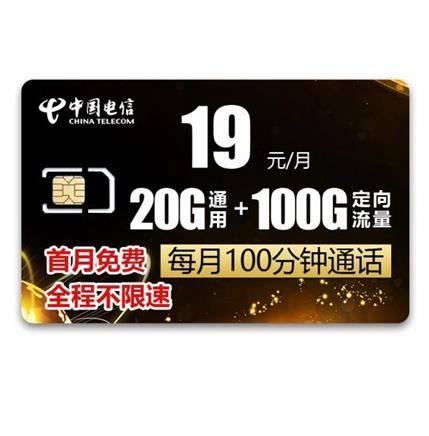 中国电信 手机卡 20G通用+100G定向流量+100分钟通话 电信冰神卡19元/月    21元(首月免月租)