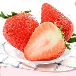移动专享: 砀宁果品 大凉山 红颜草莓 3斤装