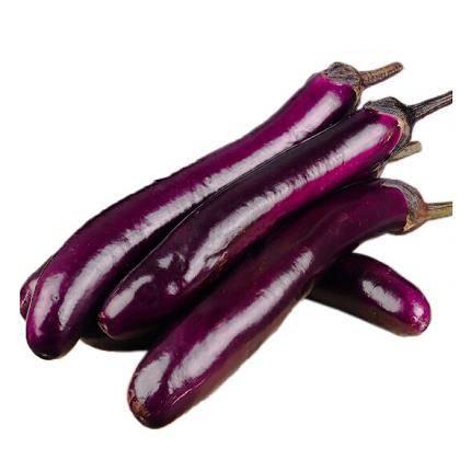 晋村 新鲜蔬菜茄子 长茄子 5斤装