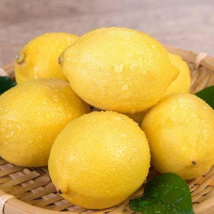 欣鲜果农 四川安岳新鲜柠檬 大果 6斤