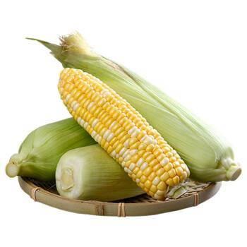 DPSP 新鲜云南水果甜玉米 5斤装*2件 14.8元包邮(双重优惠)